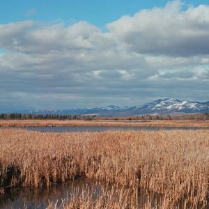 Photo of Lee Metcalf Refuge by Hobie Hare