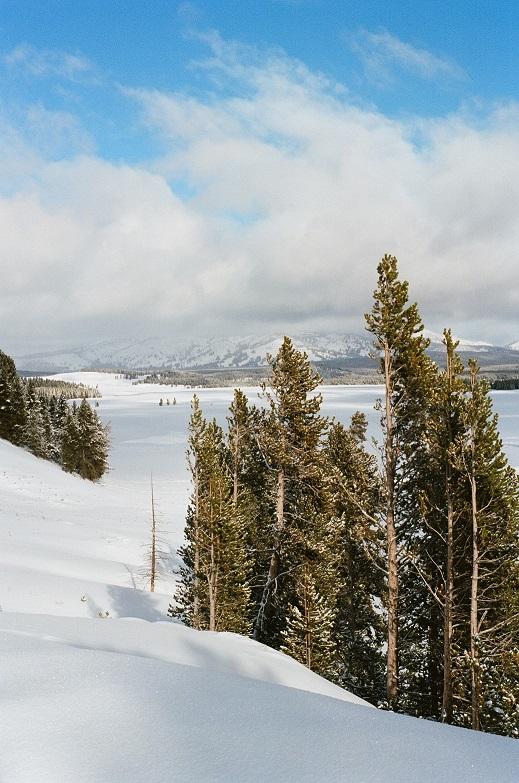 Hayden Valley Winter Photo by Hobie Hare 2020